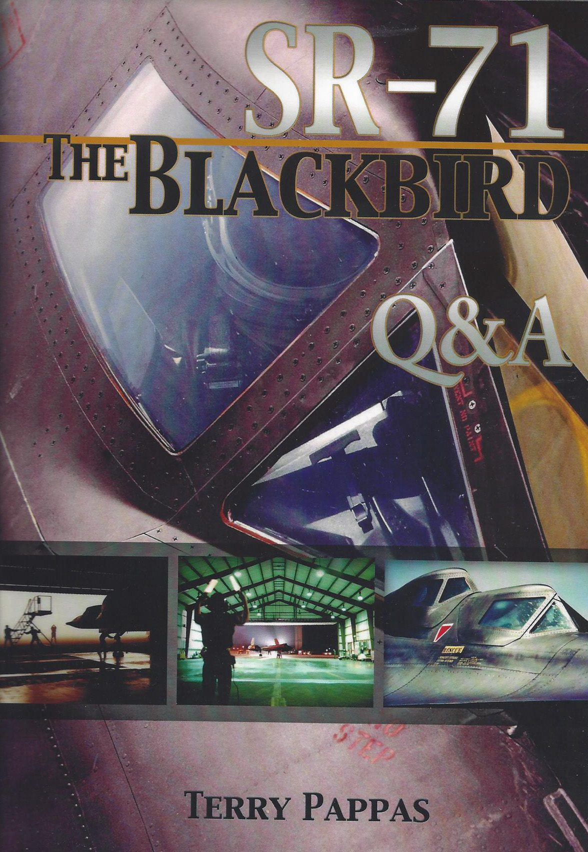 Blackbird book cover scan