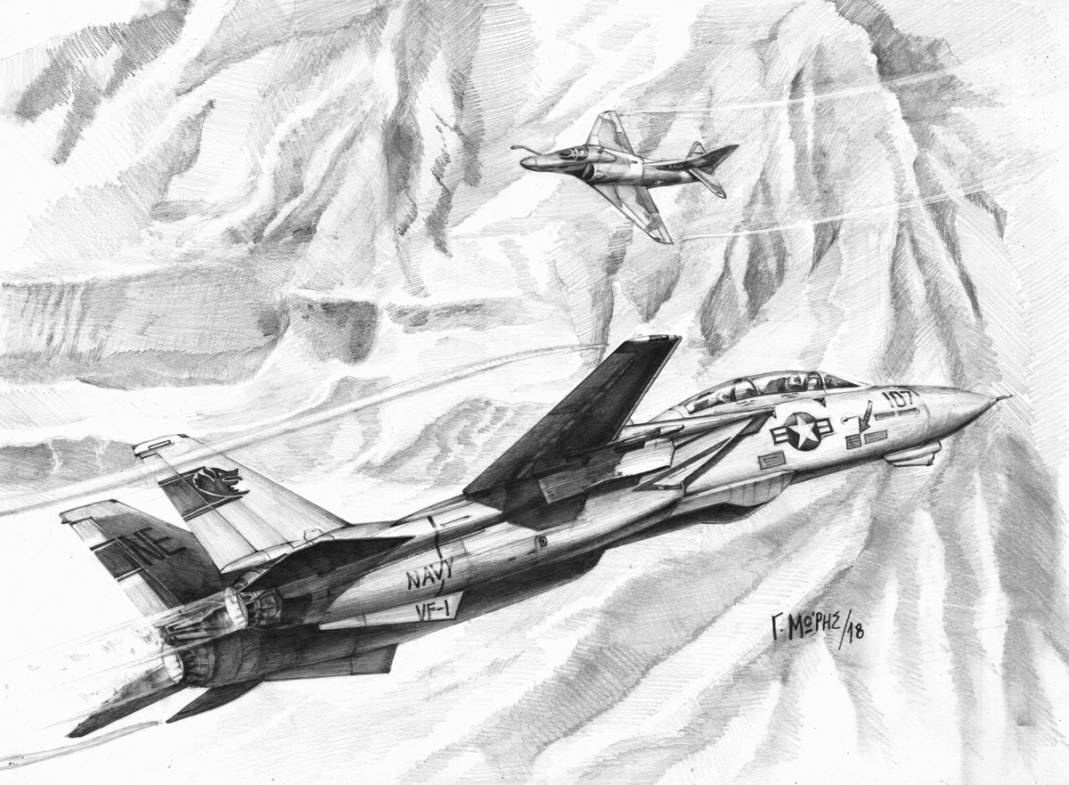 Top Gun Tomcat