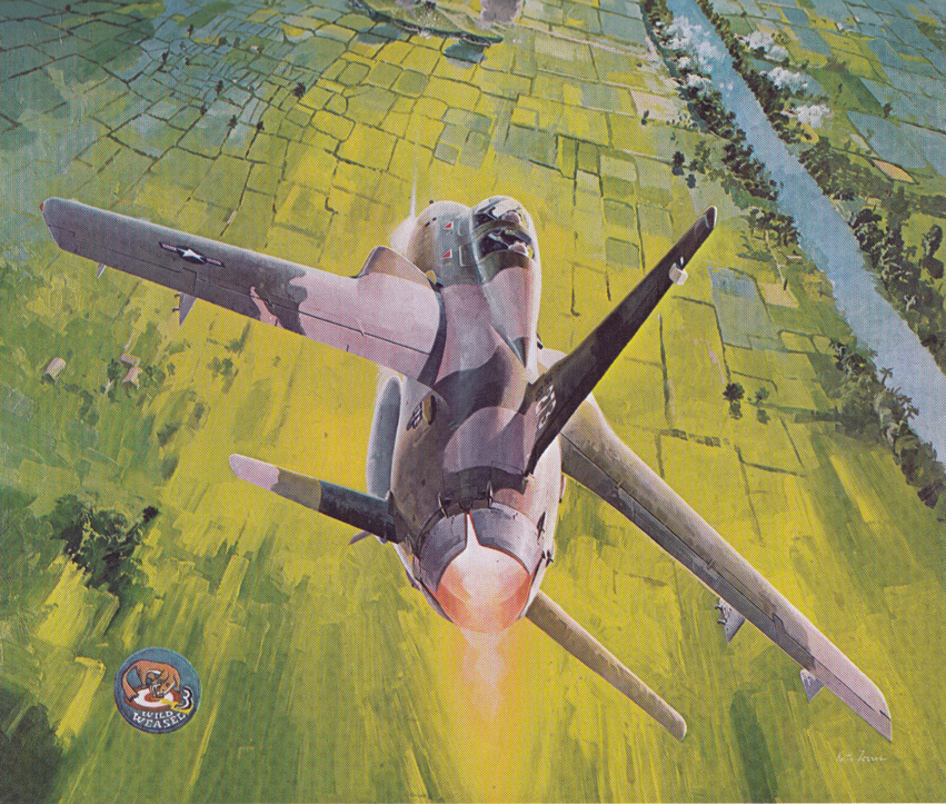 Wild Weasel. low res jpg